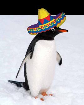 penguinsombrero