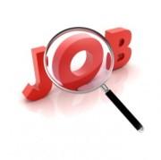 Job-300x299